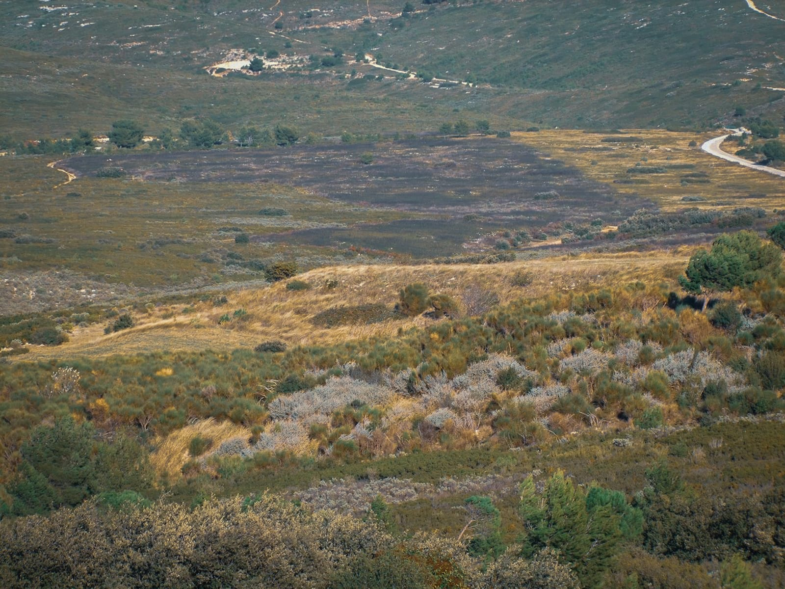 Frange ville nature Marseille Test feu massif etoile®Hermeline Carpentier
