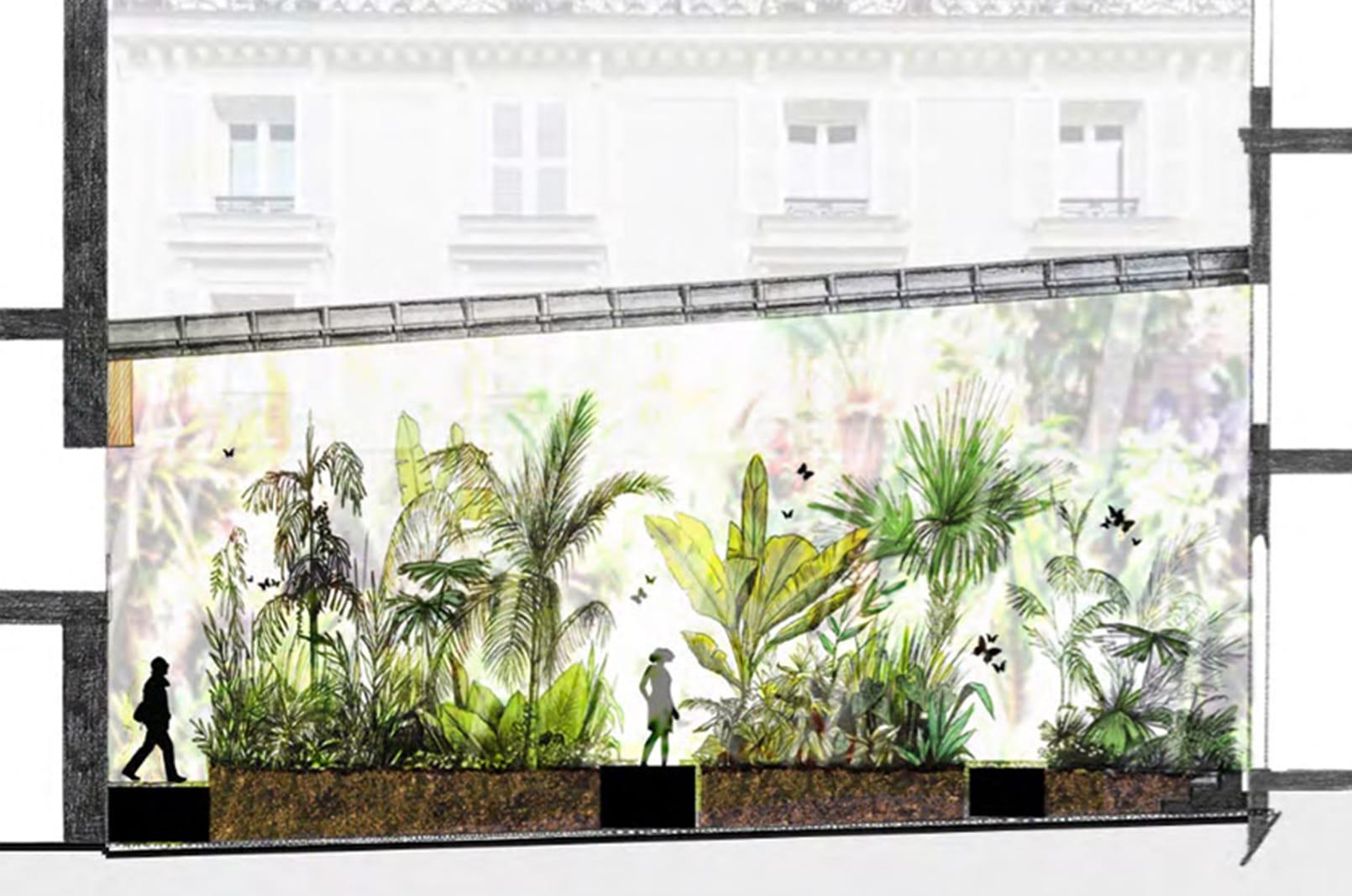 jardinmuseeparfum patioserreauxepices®Hermeline carpentier