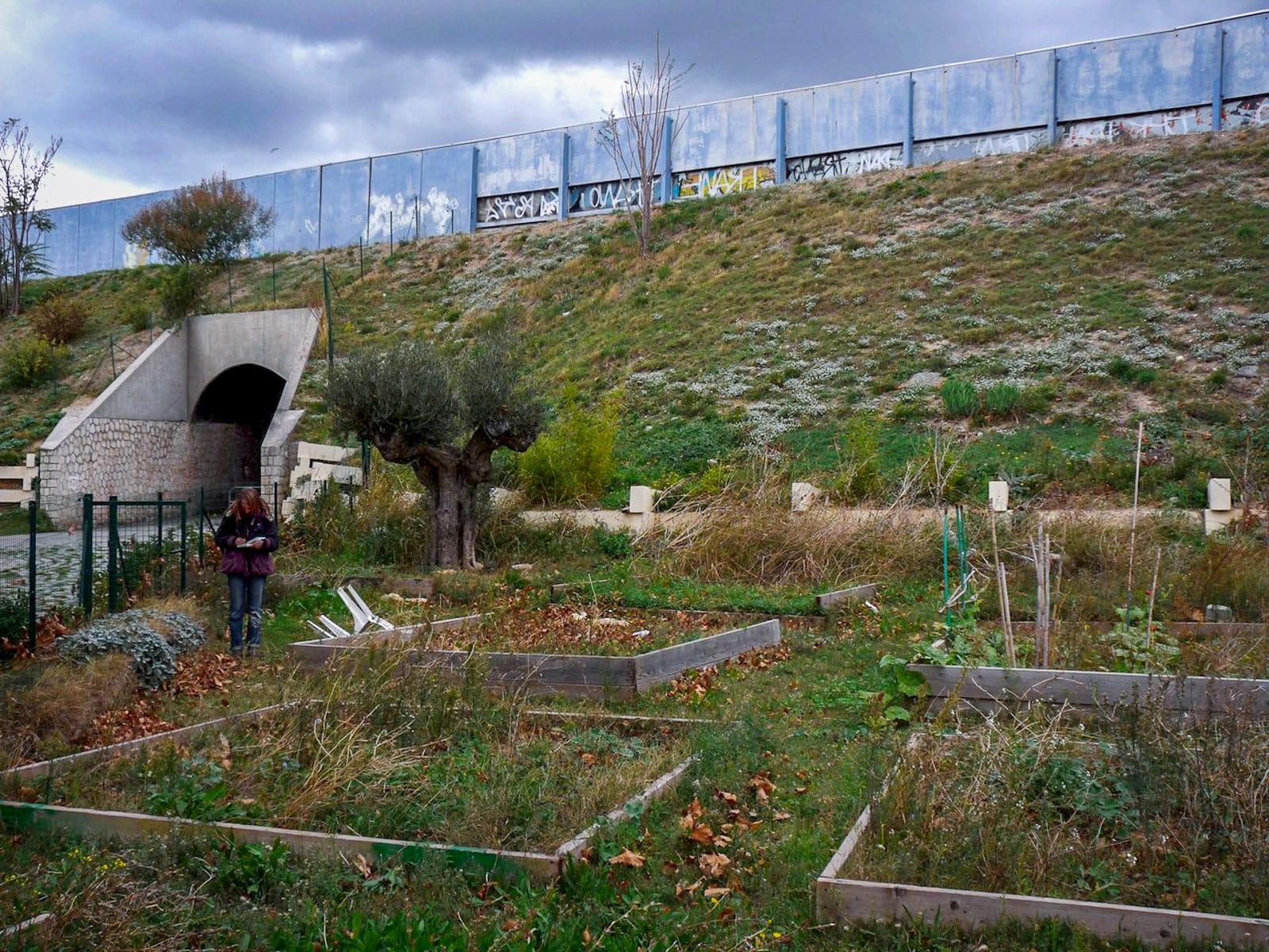 Frange ville nature Marseille jardins partages®Hermeline Carpentier