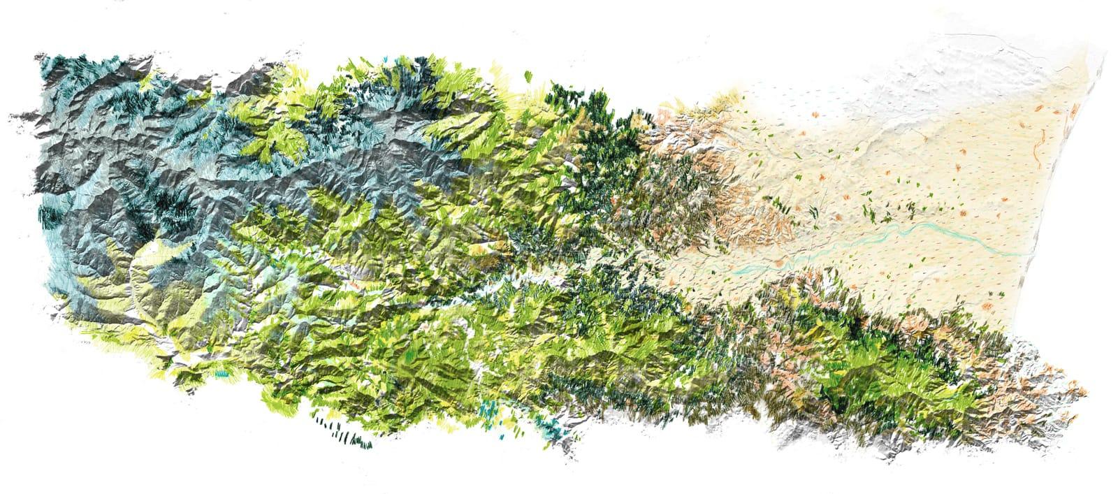etude foret carte végétation topographie vallee du tech®HermelineCarpentier