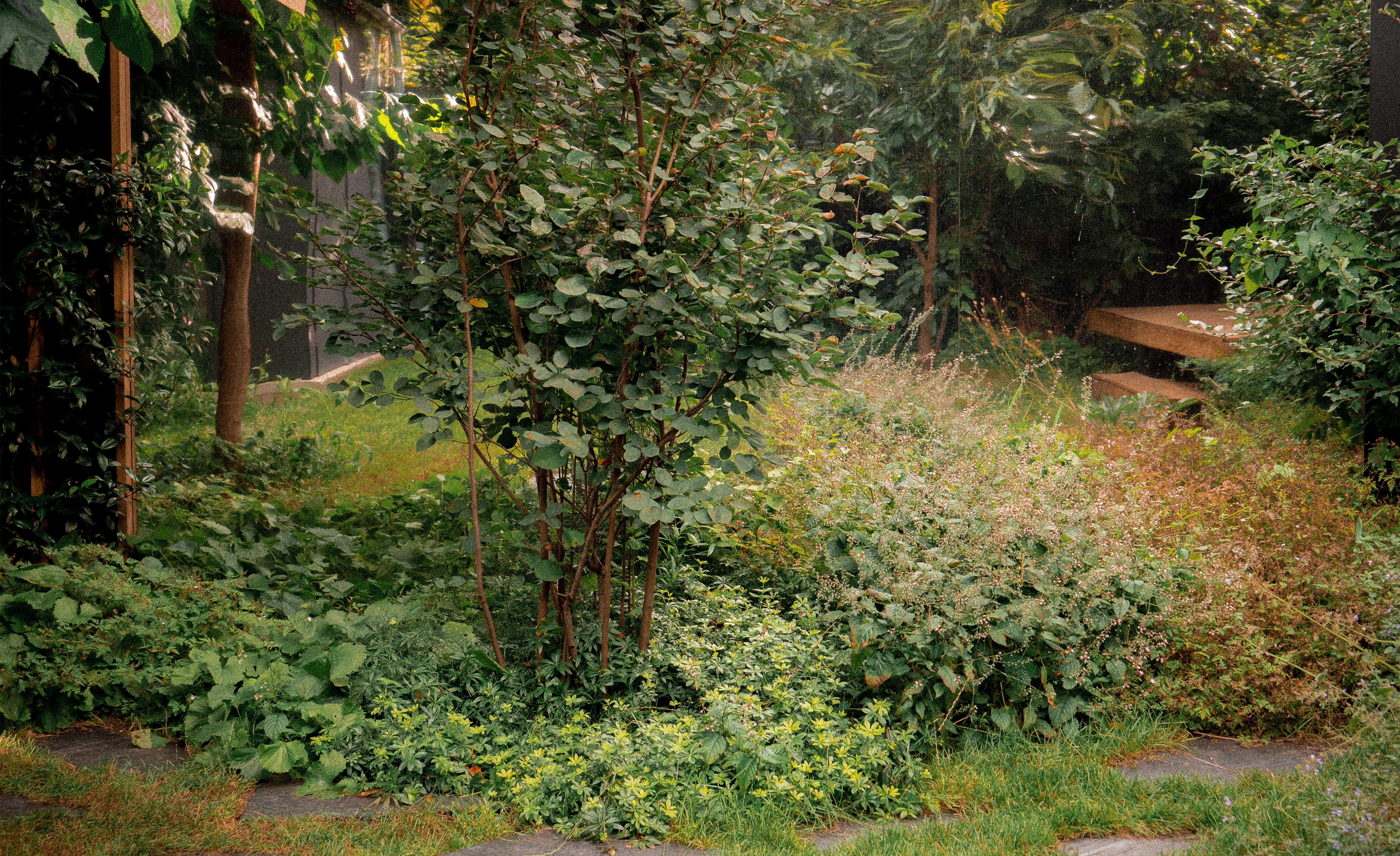 04_Jardin-infini-à-chatillon-Paysagiste-Hermeline-Carpentier-©photo-Anthony-Marques